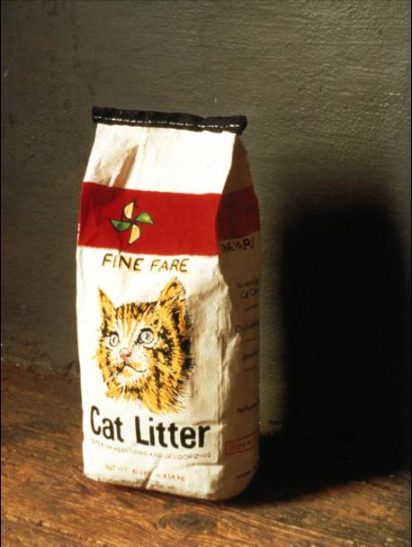 Robert Gober, Cat litter