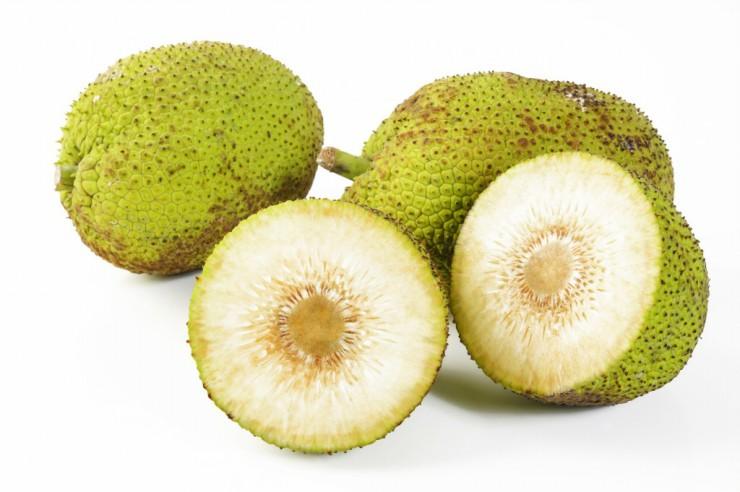 Τα φρούτα της Αφρικής - african breadfruit