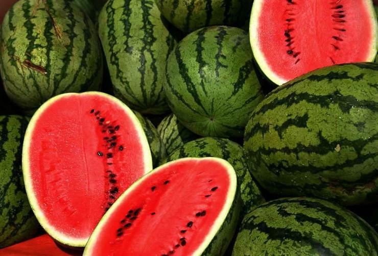 Τα φρούτα της Αφρικής - καρπούζι