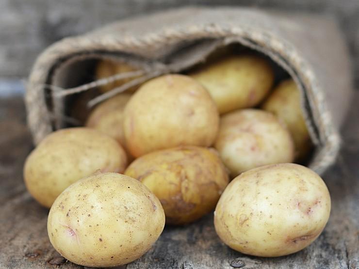 Το βασικό θρεπτικό συστατικό της πατάτας, οι υδατάνθρακες, προσλαμβάνεται μέσω του αμύλου και παρέχει την απαραίτητη ενέργεια για τις καθημερινές μας δραστηριότητες