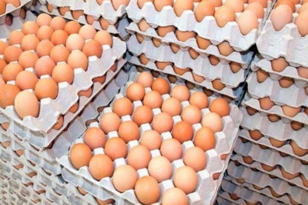 μολυσμένα αυγά σκάνδαλο